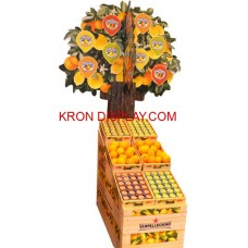 Karton Ağaç - 11